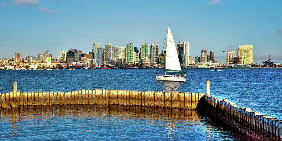 San Diego Cityscape by David Patterson