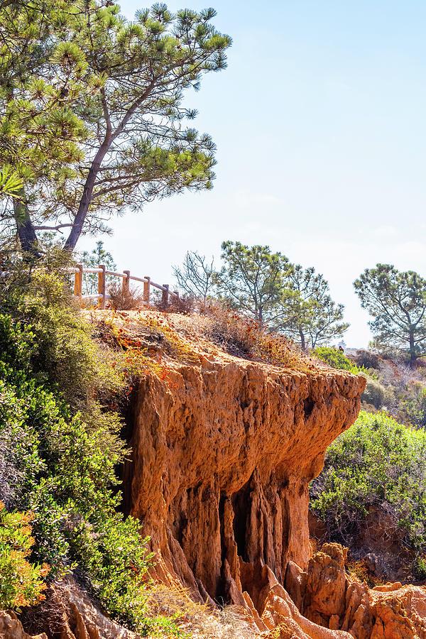 San Diego Landscape by Debbie Ann Powell