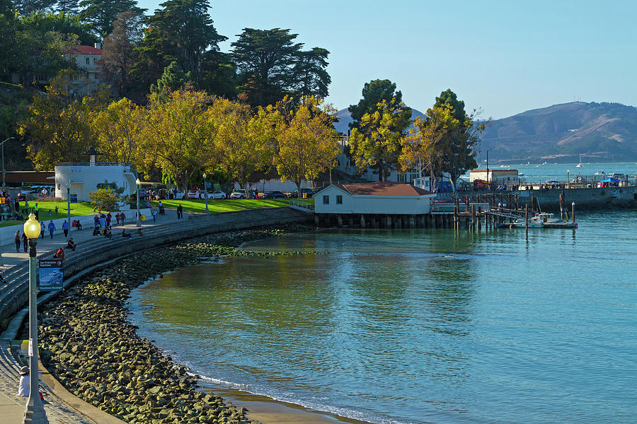 San Francisco Aquatic Park Afternoon by Bonnie Follett