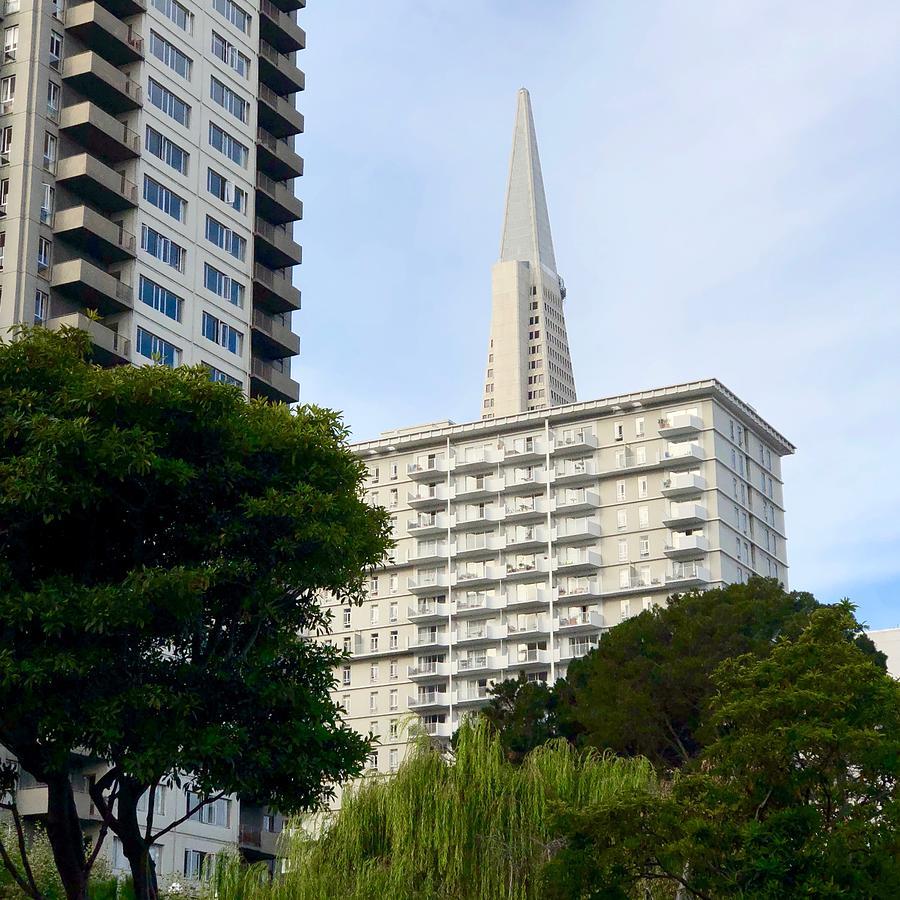 San Francisco Pyramid by Dan Twomey