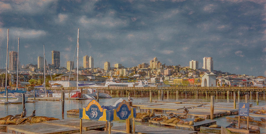 San Francisco Photograph - San Francisco Skyline From Pier 39 by Marcy Wielfaert