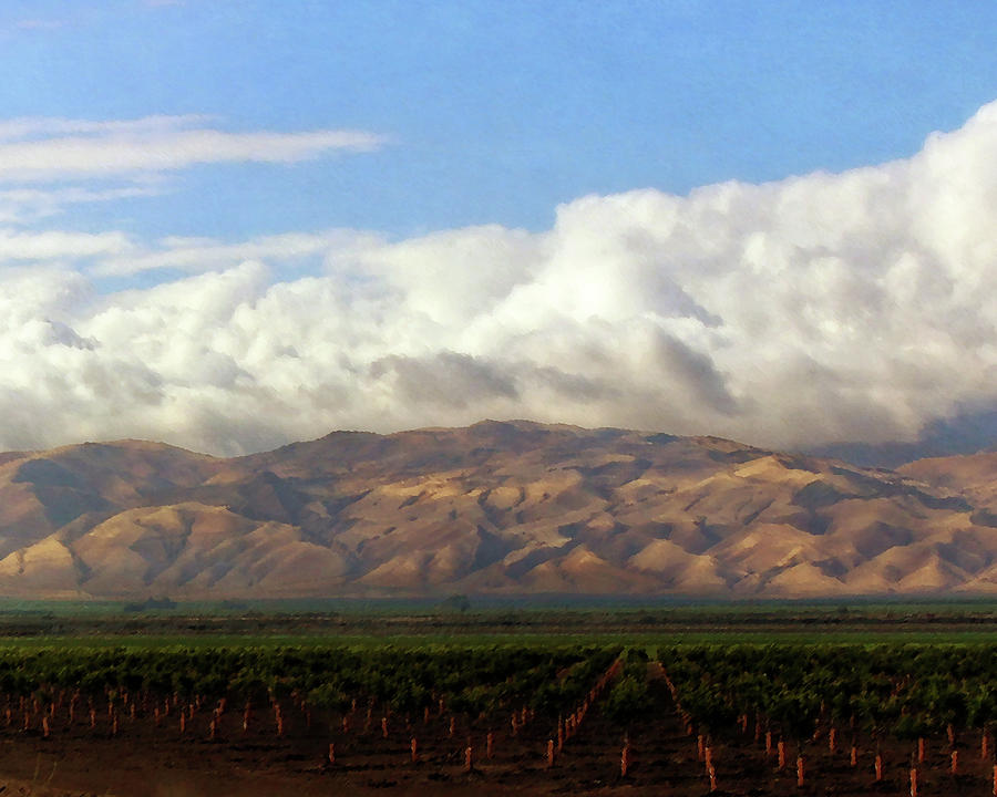 San Joaquin Valley Ag Field 1 by Timothy Bulone