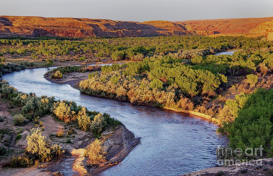 San Juan River At Sunrise Photograph by Mae Wertz