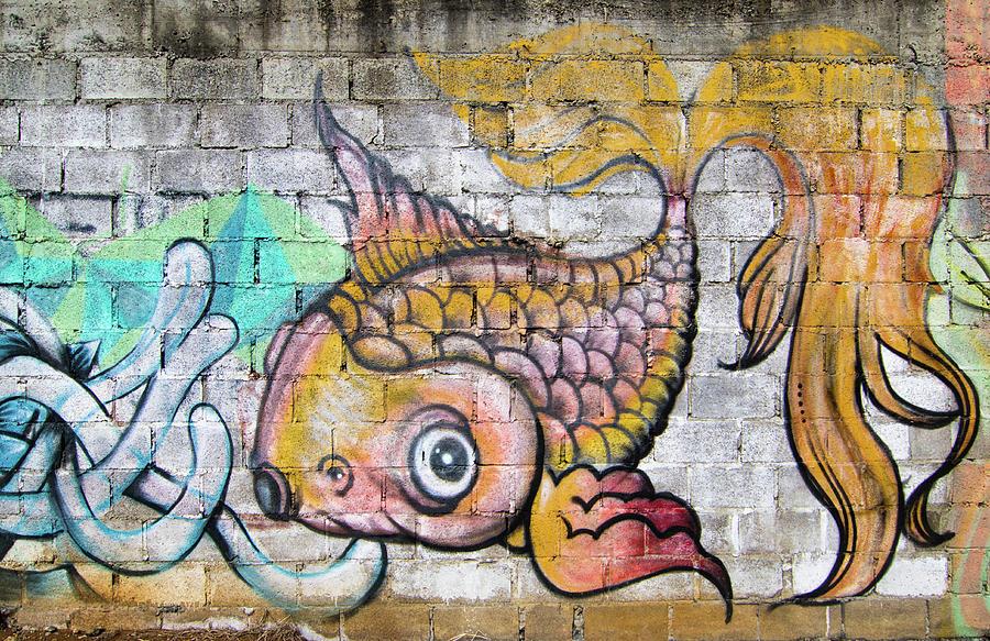 San Ramon Graffiti Fish Photograph