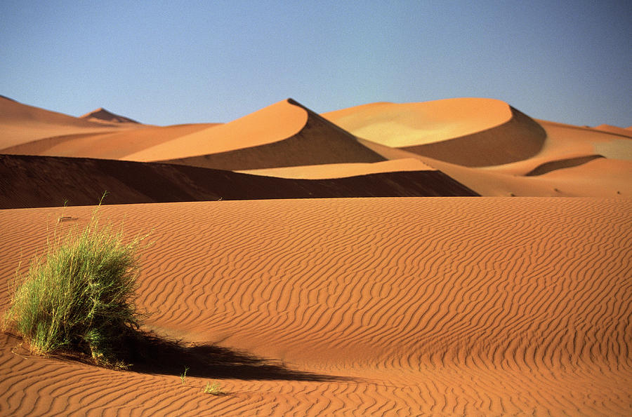 Sand Dunes In Namib Desert, Namibia Photograph by Walter Bibikow
