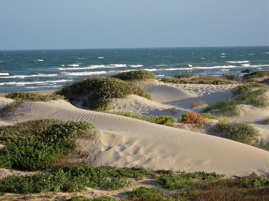Sand Dunes Photograph by Joe M. Oconnell