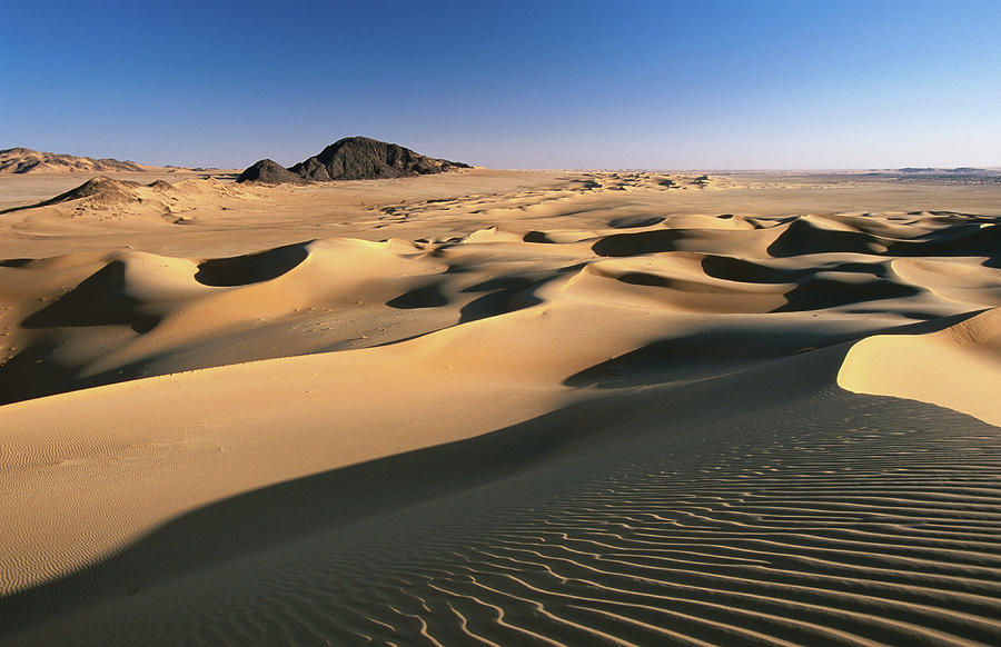 Sand Dunes Of Ilekane In Tenere Part Of Photograph by Frans Lemmens