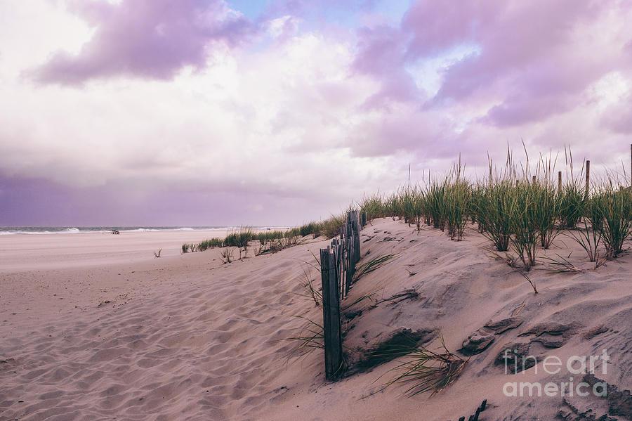 Sand Dunes Under a Lavender Sky by Colleen Kammerer