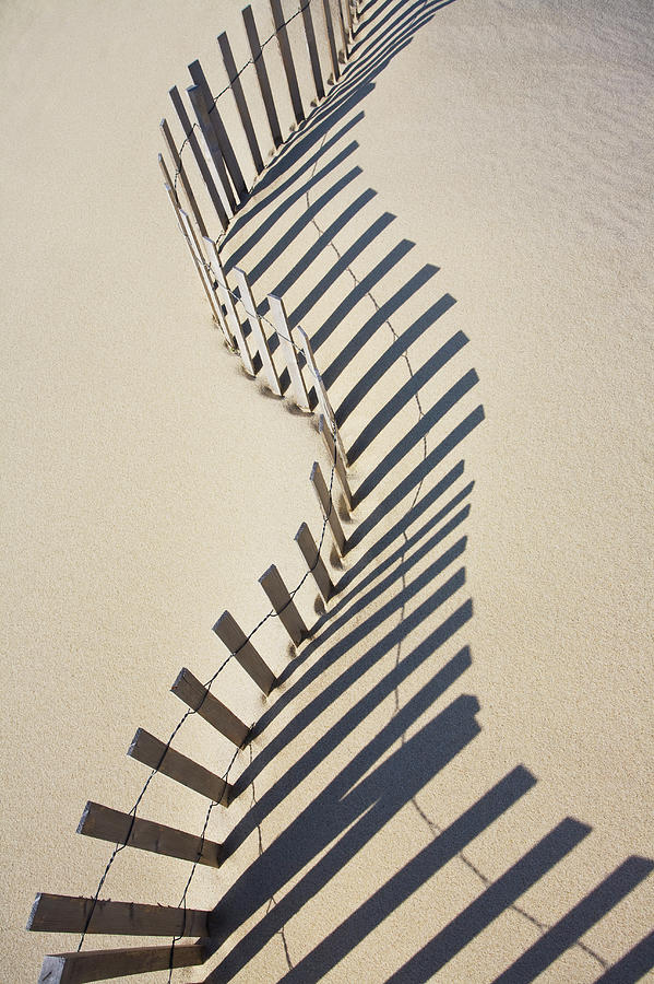 Sand Fence, Nantucket Island Photograph by Nine Ok