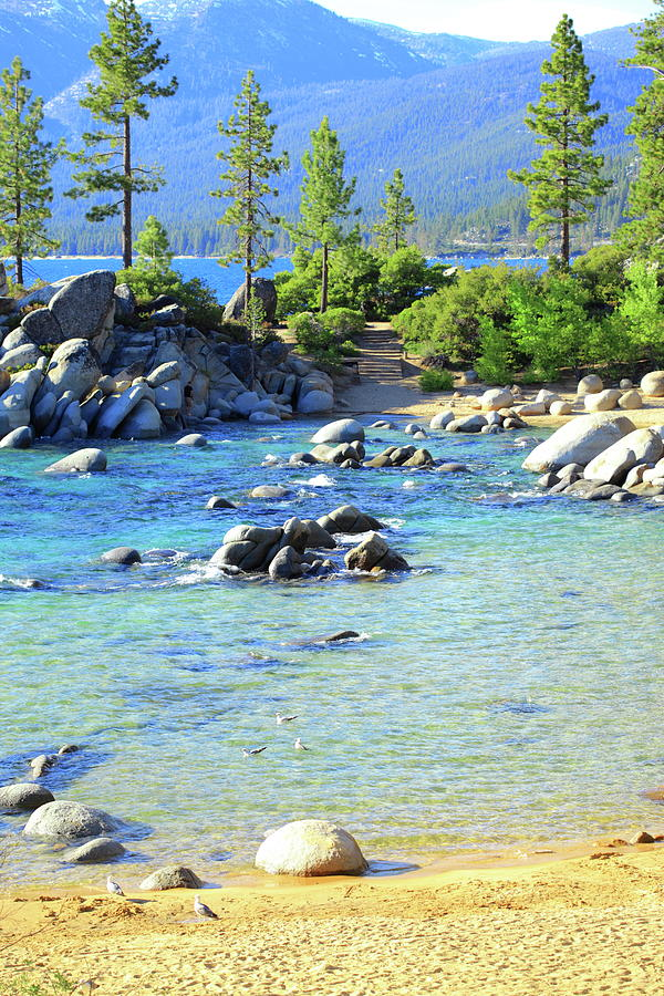 Sand Harbor In June, Lake Tahoe, Nevada Photograph by D. Sharon Pruitt Pink Sherbet Photography