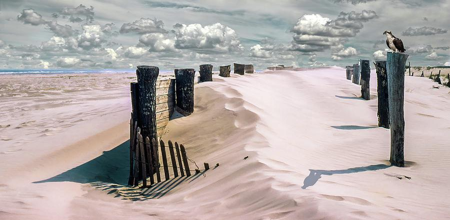 Sand by Richard Goldman