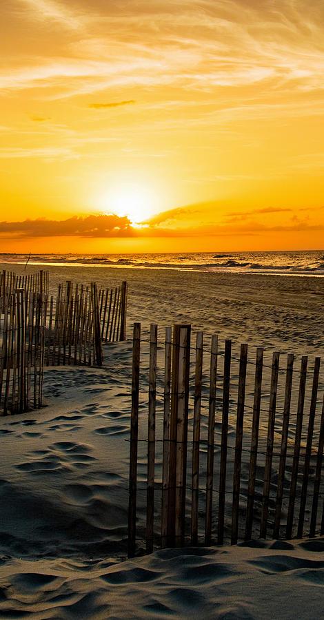 Sand Tracks by John Harding