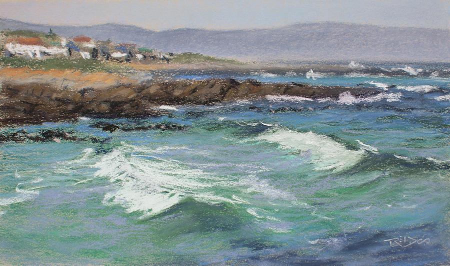 Sandbaai From Onrus by Christopher Reid