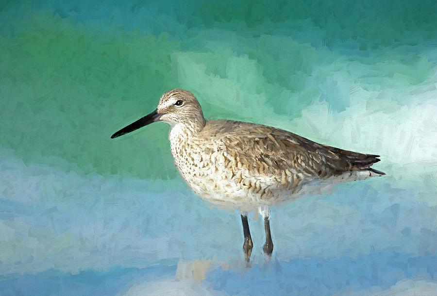 Sanderling in the Surf by Gordon Ripley