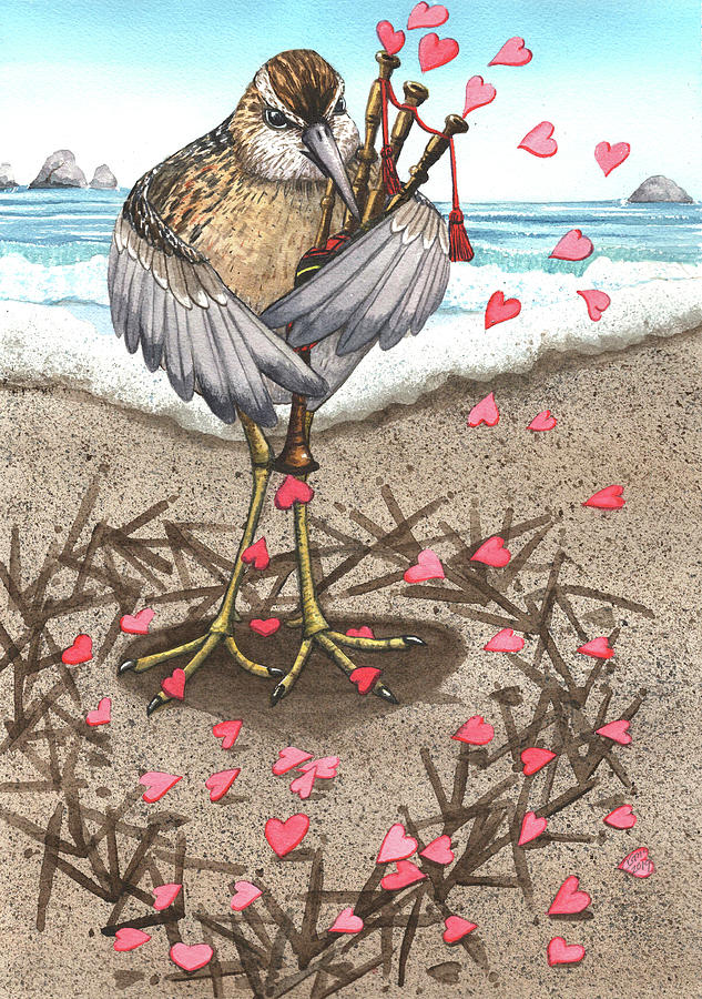 Sandpiper by Catherine G McElroy