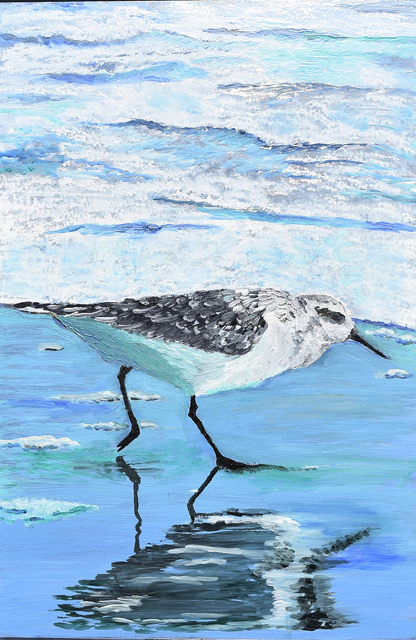 SANDPIPER by Toni Willey