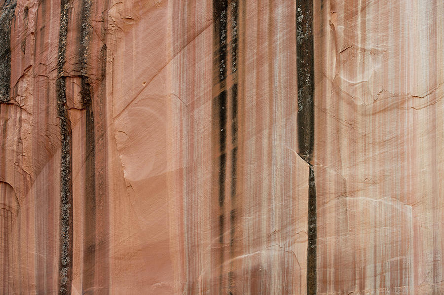 Abstract Photograph - Sandstone Cliff Above Calf Creek Trail by William Mullins
