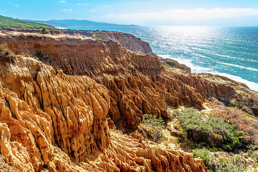 Sandstone Cliff Views in San Diego by Debbie Ann Powell