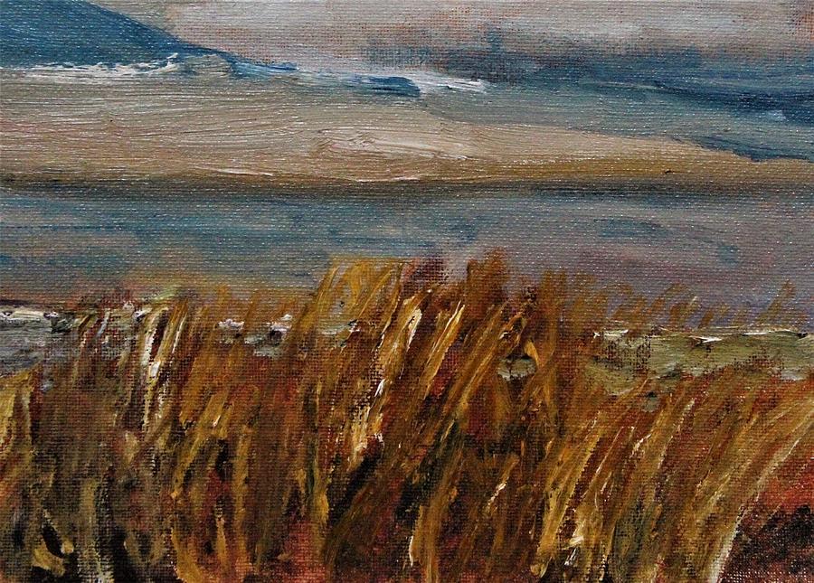Sandy Neck View by Michael Helfen