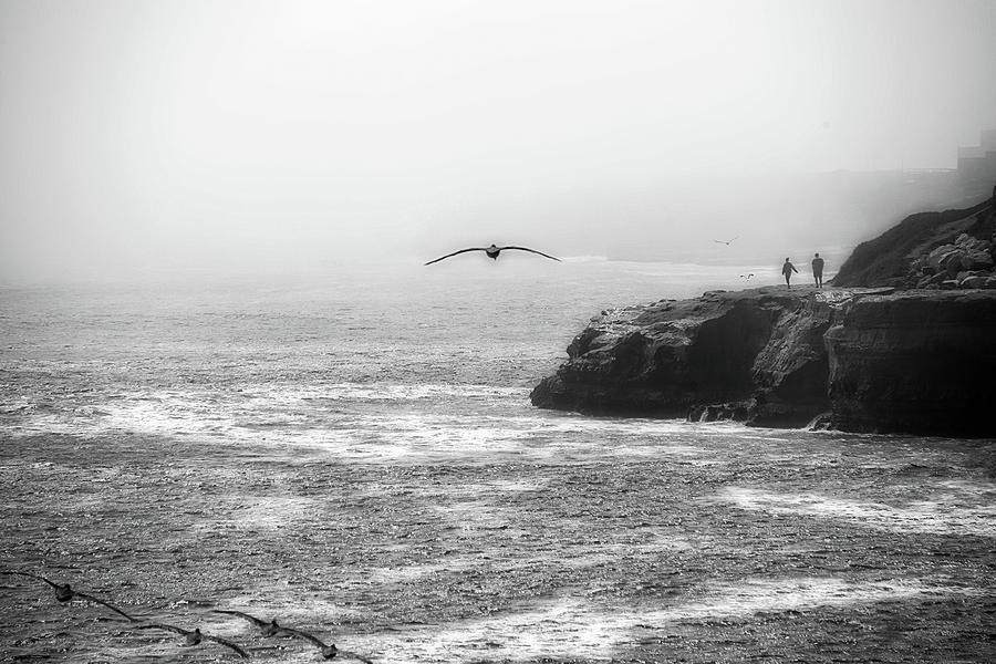 Santa Cruz Coast by Eric Wiles