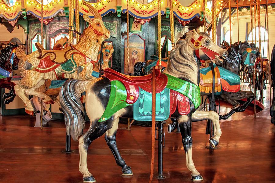 Santa Monica Carousel Stander Horse by Kristia Adams