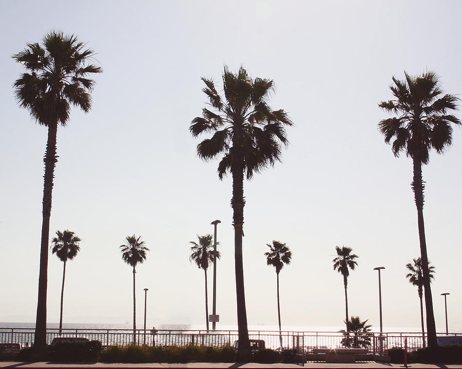 Santa Monica Photograph - Santa Monica- Photography By Linda Woods by Linda Woods