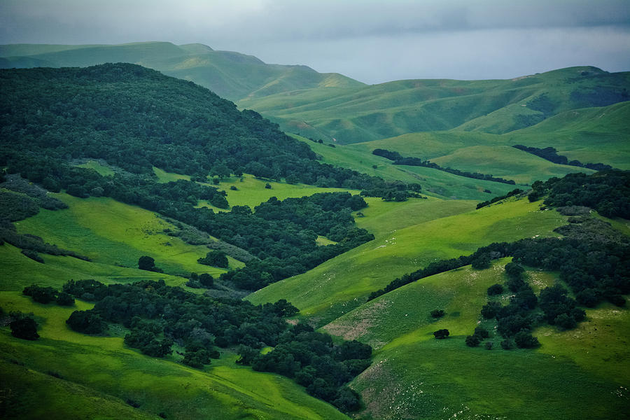 Santa Ynez Green Valley by Kyle Hanson