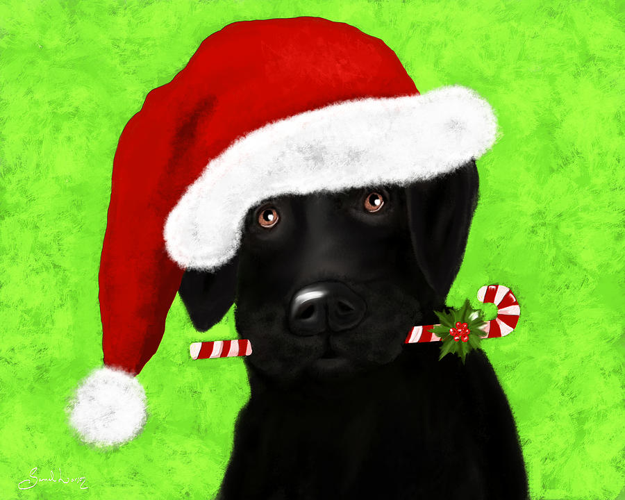 Santa's Little Helper by Sannel Larson