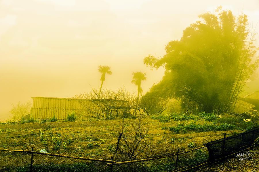 Sapa Vietnam Photograph - Sapa Landscape, Vietnam by Madeline Ellis