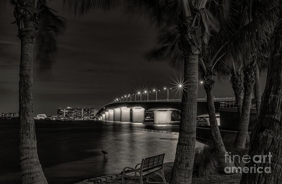 Sarasota At Night Photograph