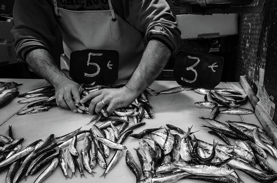 Fishes Photograph - Sardineando by Borja Robles
