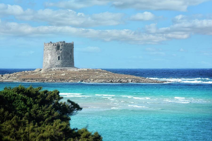 Sardinia Torre Della Pelosa Photograph