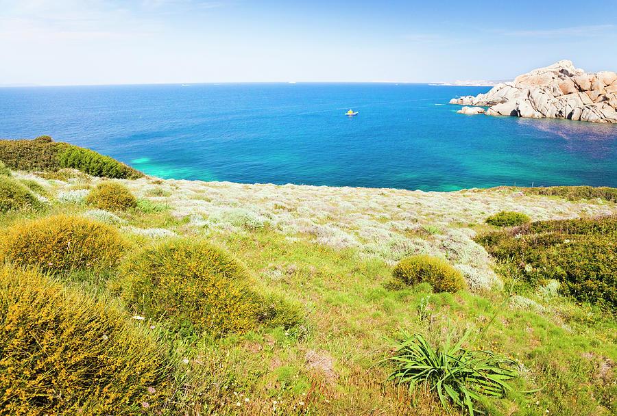 Sardinian Coast Photograph by Spooh
