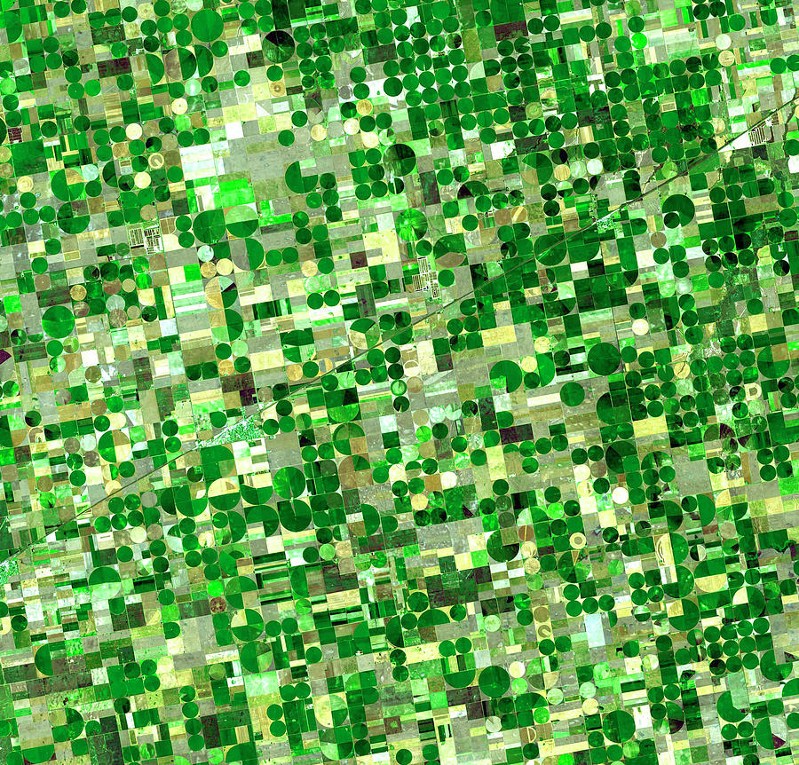 Outdoors Photograph - Satellite View Of Crop Circles In by Education Images