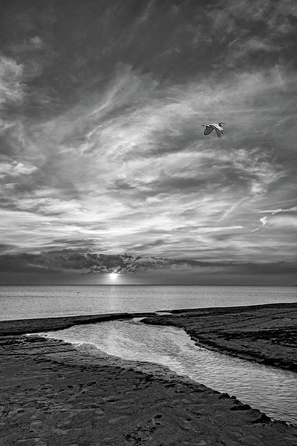 Sauble Beach Sunset - Heading Home Bw Photograph