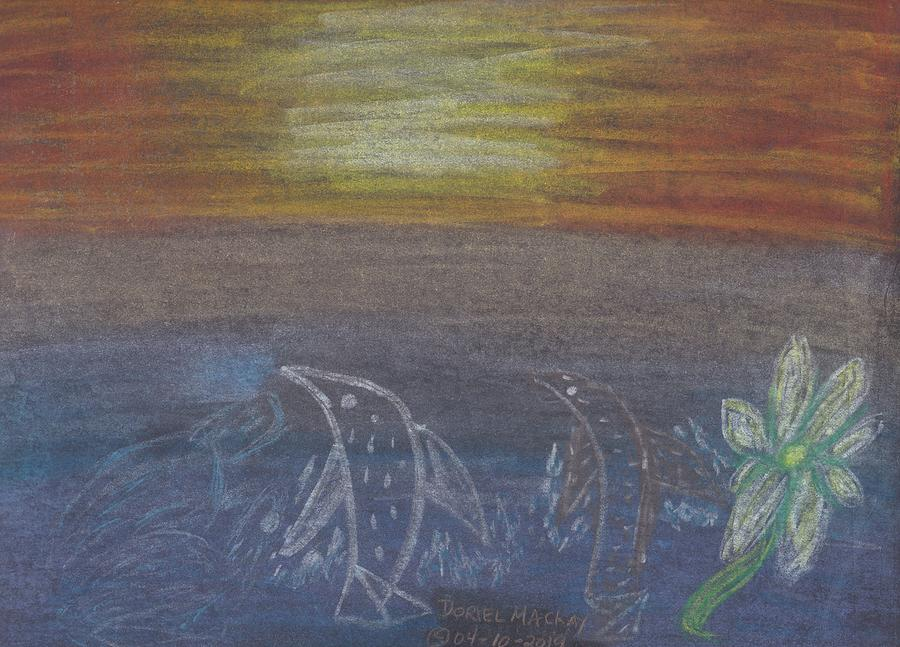 Save the Dolphins by Doriel Mackay