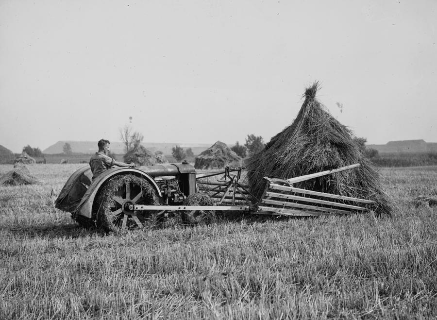 Saving Haystacks Photograph by W. G. Phillips