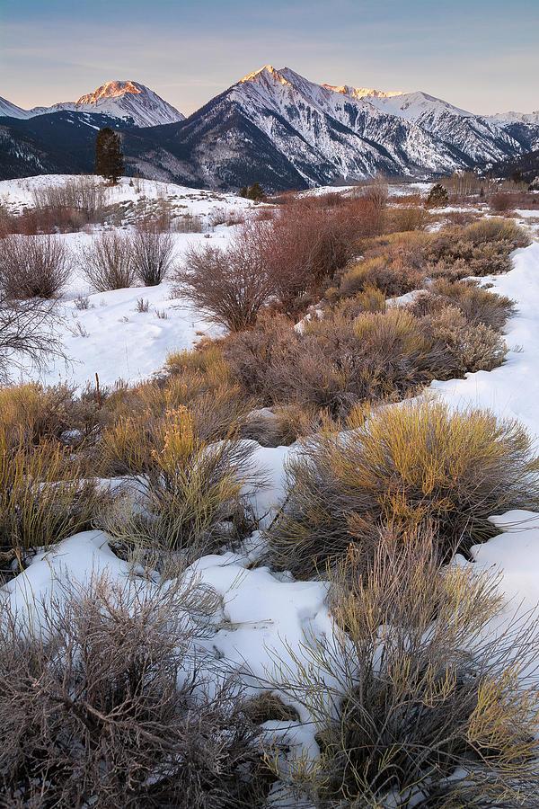 Sawatch Winter Sunrise by Aaron Spong