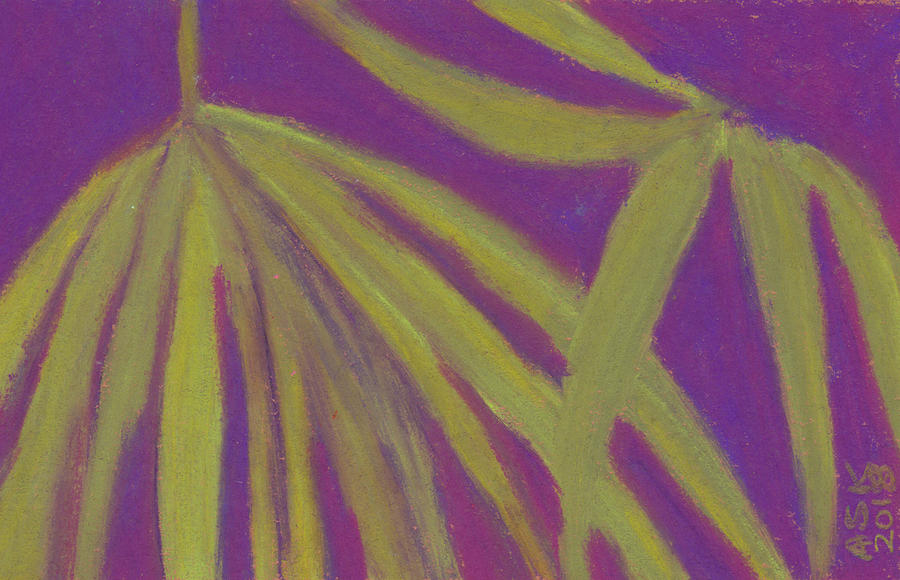 Sawgrass Palmetto Study by Anne Katzeff