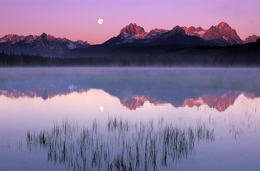 Sawtooth Mountains Reflecting In Little Photograph by Steve Bly