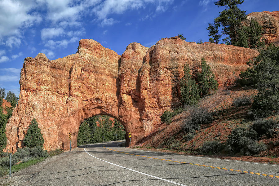 Red Canyon Photograph - Scenic Byway 12 by Donna Kennedy