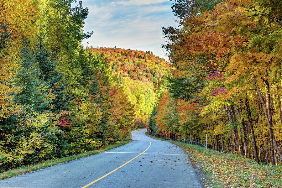 Scenic Drive in Autumn by Pierre Leclerc Photography