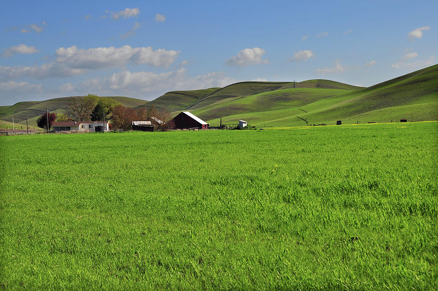 Scenic Green Countryside Photograph by Mitch Diamond