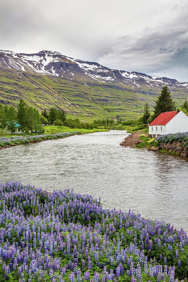 Scenic Icelandic Town Seydisfjordur Photograph