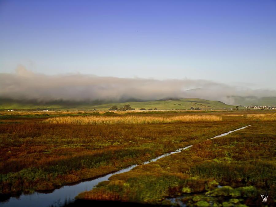Scenic Landscape by Joyce Dickens