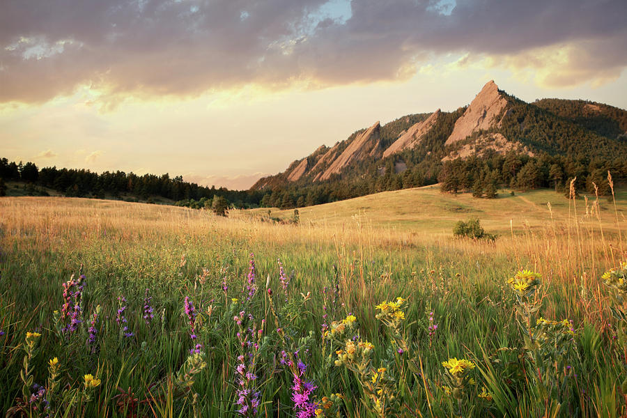 Scenic View Of Meadow And Mountains Photograph by Seth K. Hughes
