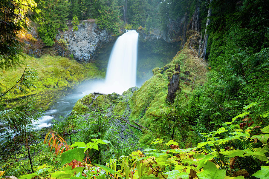 Scenic View Of Waterfall, Portland by Panoramic Images