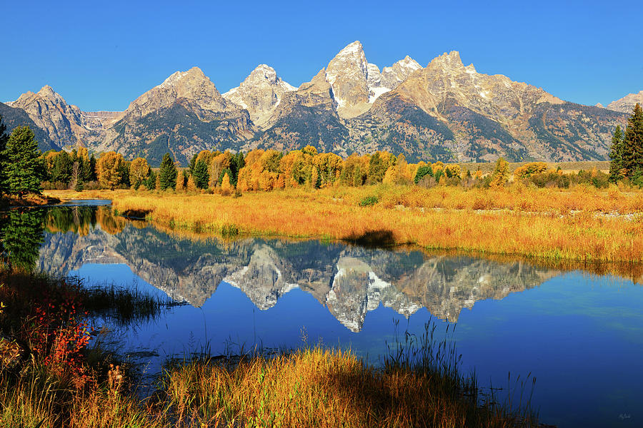 Schwabacher Autumn Morning Reflections by Greg Norrell