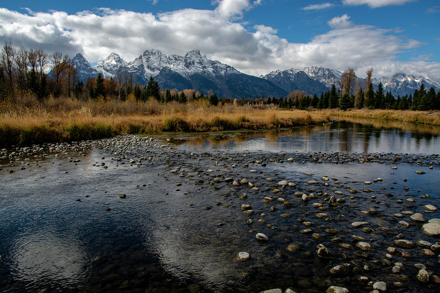 Schwabacher Landing by Scott Read