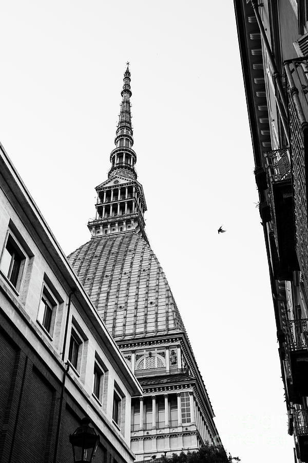 Scorcio Mole Antonelliana Photograph by Tiziana Nobile
